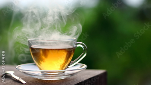 Hot tea in coffee shop with green garden outdoor in the morning