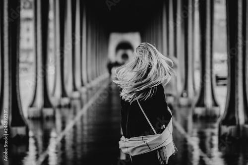 Parisienne sous les ponts de Paris Fototapeta