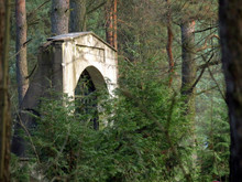 Old Stone Bridge In The Forest