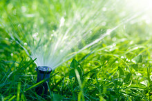 Lawn Water Sprinkler Spraying Water Over Lawn Green Fresh Grass In Garden Or Backyard On Hot Summer Day. Automatic Watering Equipment, Lawn Maintenance, Gardening And Tools Concept.