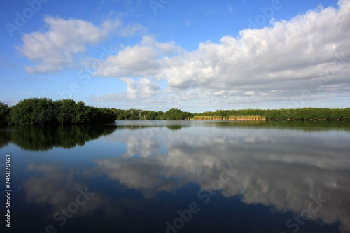 Fotografie, Obraz  Cloudscape reflected in the still waters of Paurotis Pond in Everglades National Park, Florida