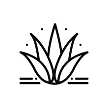 Black Line Icon For Agave