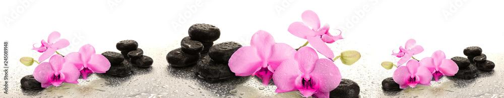 Fototapety, obrazy: Różowe storczyki na kamieniu | Pink orchids on stone