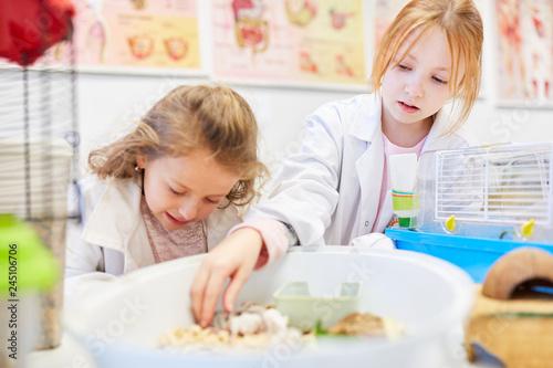 Fotografie, Obraz  Kinder versorgen Mäuse im Biologie Unterricht