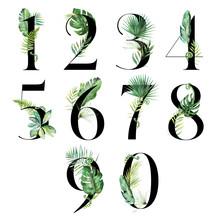 Black Tropical Floral Number Set - Digits 1, 2, 3, 4, 5, 6, 7, 8, 9, 0 With Flowers Bouquet Composition. Unique Collection For Wedding Invites Decoration & Other Concept Ideas.