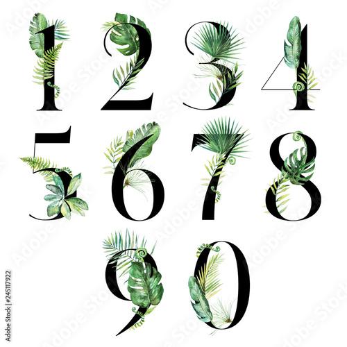 Fotografia Black Tropical Floral Number Set - digits 1, 2, 3, 4, 5, 6, 7, 8, 9, 0 with flowers bouquet composition