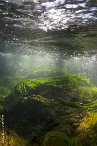 Canvas Print Rocks underwater on riverbed with clear freshwater