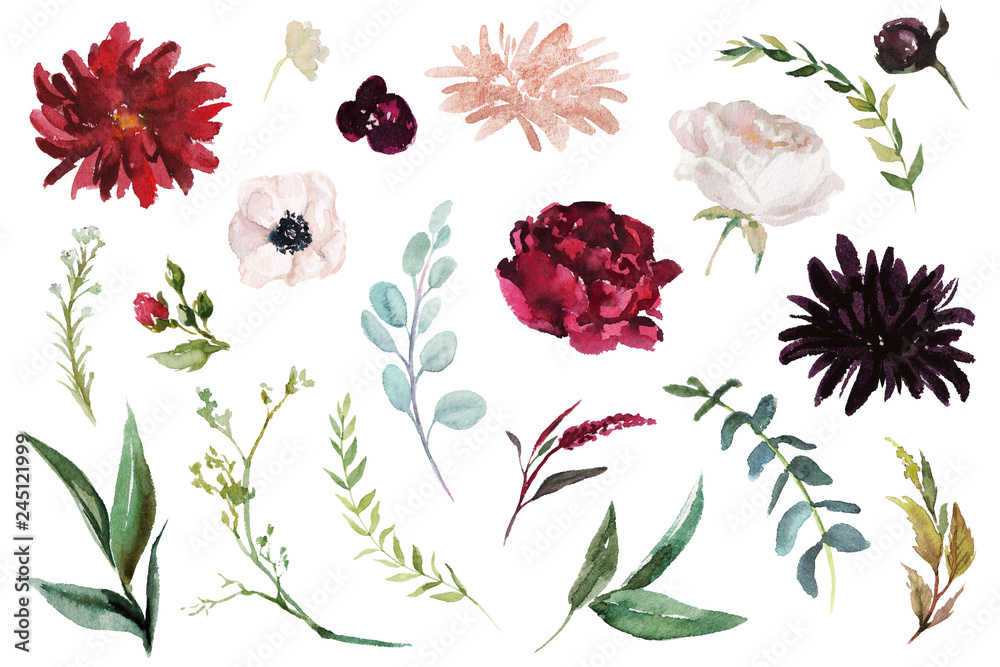 Fototapeta Watercolour floral illustration set. DIY flower elements collection - perfect for flower bouquets, wreaths, arrangements, wedding invitations, anniversary, birthday, postcards, greetings, cards, logo.