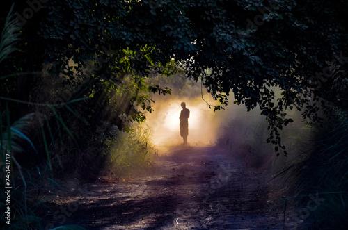 Fototapeta man silhouette standing in the fog  obraz na płótnie