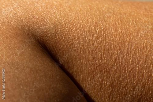 Fotografía Woman's dry skin on calf of the leg, Close up & Macro shot, Asian Body skin part