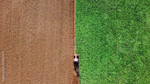 Fototapeta Machines harvesting corn in the field. Tractor mowing green field. Agriculture and farming concept obraz