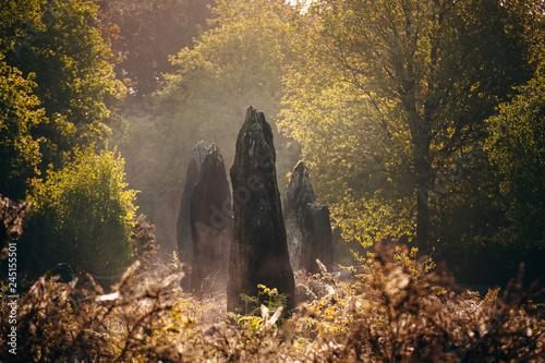 Fotografía Menhirs de Monteneuf dans la brume du matin au lever du jour