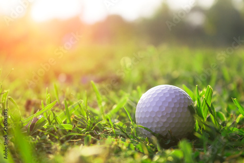 фотографія  Golf balls on green lawns in beautiful golf courses