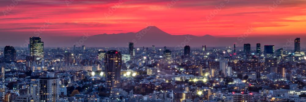 Fototapeta Tokyo Panorama bei Sonnenuntergang