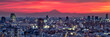 canvas print picture - Tokyo Panorama bei Sonnenuntergang