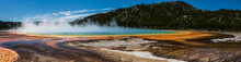 Grand Prismatic Spring Yellows...