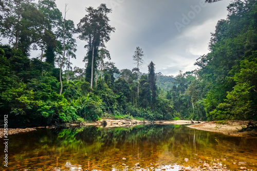 Staande foto Asia land River in Jungle rainforest Taman Negara national park, Malaysia