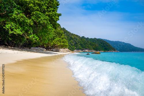 Foto op Canvas Asia land Turtle Beach, Perhentian Islands, Terengganu, Malaysia