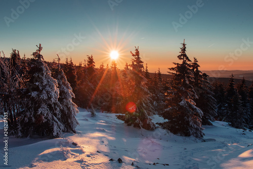 Foto auf AluDibond Braun Mountain winter landscape with snow and pine forest. Colorful sunset view from the top of the mountains with valley fog in the evening. Wolfswarte, Torfhaus, Harz Mountains National Park in Germany