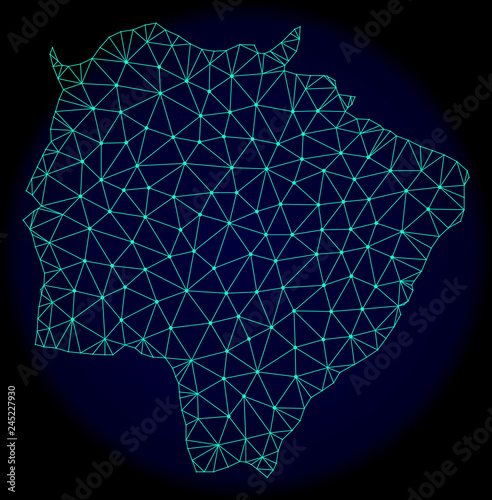 Obraz na plátne Polygonal vector mesh map of Mato Grosso do Sul State