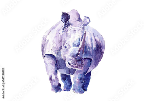 Fototapeta premium Samotny nosorożec. Rysowanie akwarelą.