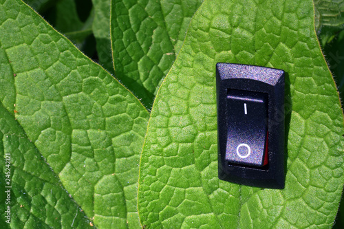 Fotografía  Green leaf with inserted power switch