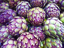 Artichokes In Portland By Skip...