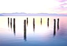 Pilings In The Great Salt Lake By Skip Weeks