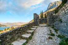 A Stray Orange Tabby Cat Stands Among The Ruins Of The Hillside Castle Of San Giovanni With The Bay Of Kotor, Or Boka, In View In The Distance On The Adriatic Coast Of Montenegro
