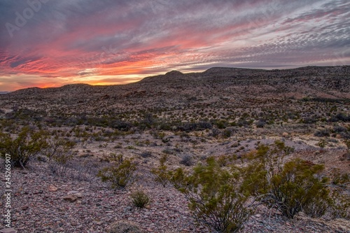 Keuken foto achterwand Lavendel Big Bend National Park is located in Far South Texas on the Mexican Border
