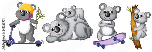 Poster Kids Set of koala bear character