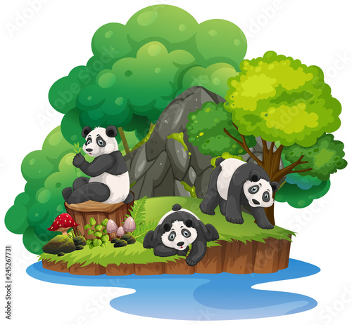 Staande foto Kids Isolated nature island with panda