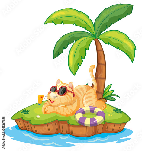Staande foto Kids Cat on the summer island
