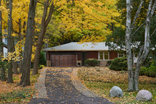 Ranch Bungalow Surrounded By T...
