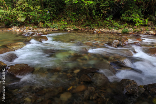 Foto op Aluminium Rivier Nature landscape view of Deep forest clean river (image slightly long expo and motion blur)
