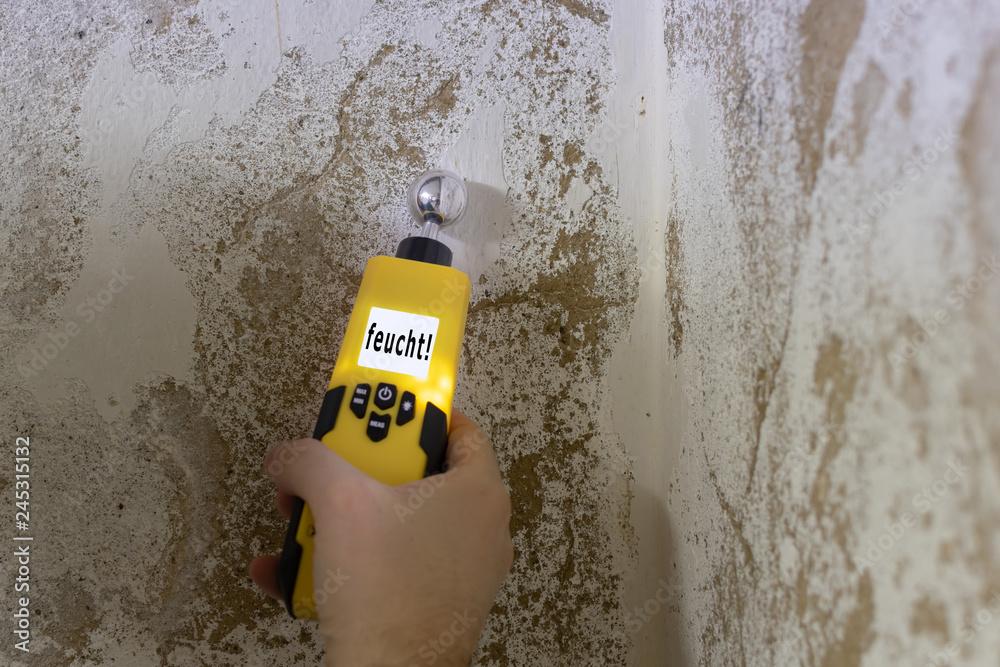 Fototapeta Mit einem Feuchtigkeitsmessgerät wird eine Kellerwand gemessen. Das Messgerät zeigt an, dass die Wand feucht ist.