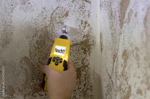 Mit einem Feuchtigkeitsmessgerät wird eine Kellerwand gemessen Poster Mural XXL