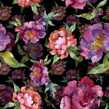 Purple Peony Floral Botanical ...