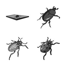Vector Design Of Insect And Beetle Logo. Collection Of Insect And Halloween Vector Icon For Stock.