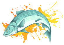 Salmon Fish Jumping Vector Il...