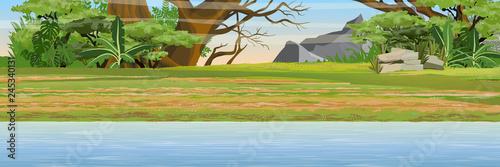 Obraz na płótnie African savannah