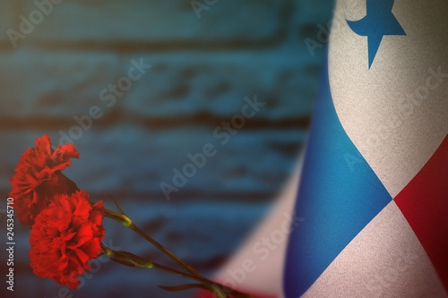 Fotografie, Tablou  Panama flag for honour of veterans day or memorial day with two red carnation flowers