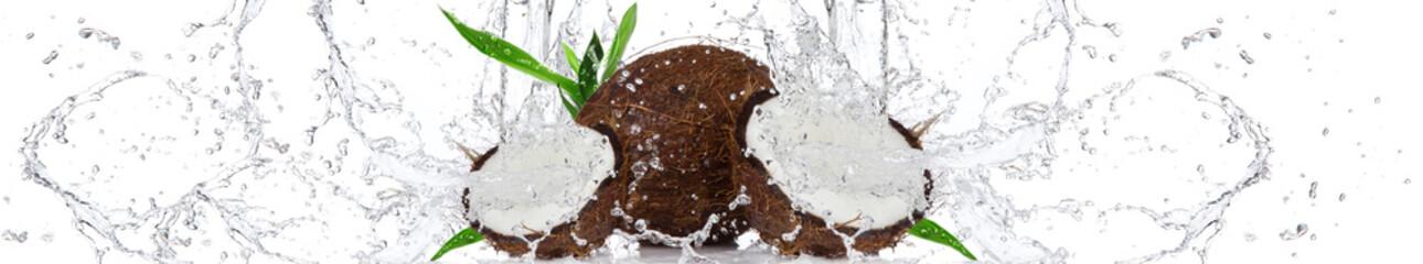 Kokos w wodzie   Coconut in the water