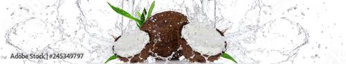Kokos w wodzie | Coconut in the water