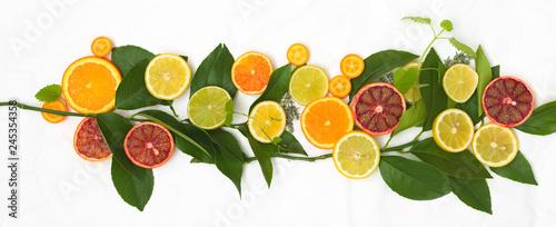 Fotografie, Obraz  many different fresh citrus fruits on white crumpled paper background