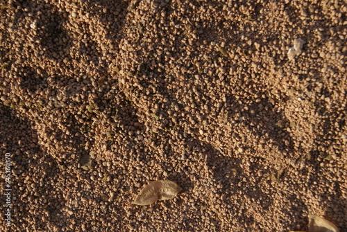 Foto  texture