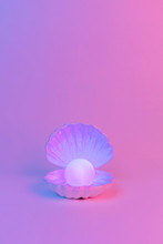 Pastel Neon Blue And Pink Light Paint On Seashell And Pearl