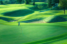Golf Course Beautiful Turf And...