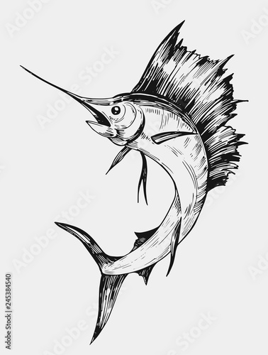 Sketch of marlin fish. Hand drawn illustration. Vector. Isolated Wallpaper Mural