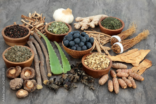 Adaptogen food selection with herbs, spice, fruit and supplement powders Canvas Print
